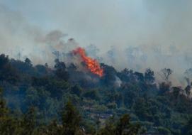 Vigilance sécheresse : Débroussailler, un impératif  !